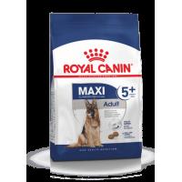 Royal Canin Maxi Adult 5+ Корм для взрослых собак крупных пород (вес собаки от 26 до 44 кг) в возрасте от 5 до 8 лет