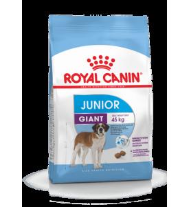 Royal Canin Giant Junior Корм для щенков собак очень крупных пород (вес взрослой собаки более 45 кг) в возрасте с 8 до 18/24 месяцев